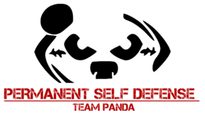 PSD Team Panda - Selbstverteidigung Kampfsport Berlin